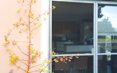 Holz-Aluminium-Fenster – so viel Mehrwert